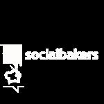Copy of social bakers